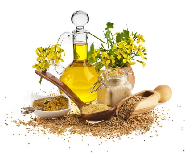 maslo-gorchicy-poleznye-svojstva