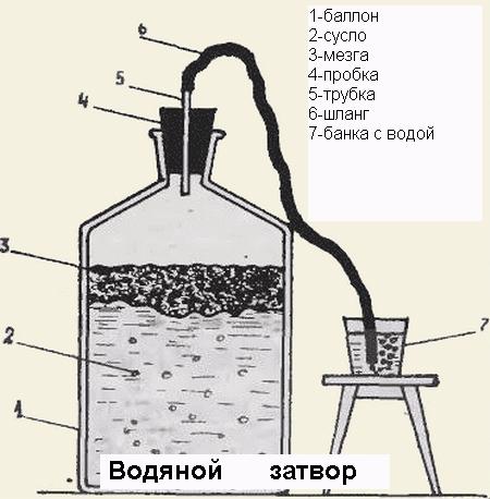 gidrozatvor-dlya-vinodeliya