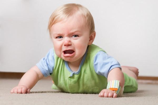 цена понимаю, причины плаксивости у детей сроки подачи документов
