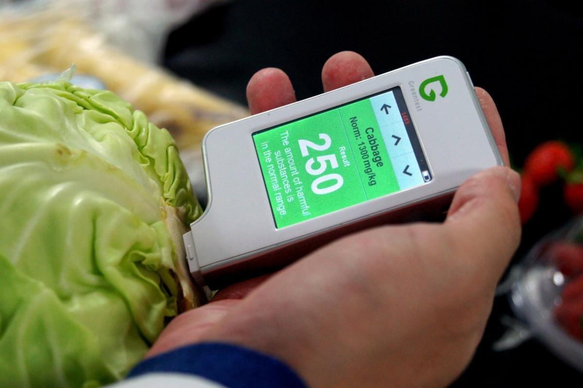 Проверка нитратов в овощах в домашних условиях