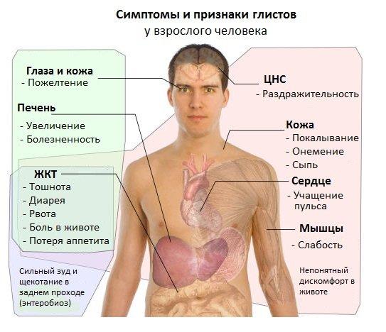причины паразитов в организме человека