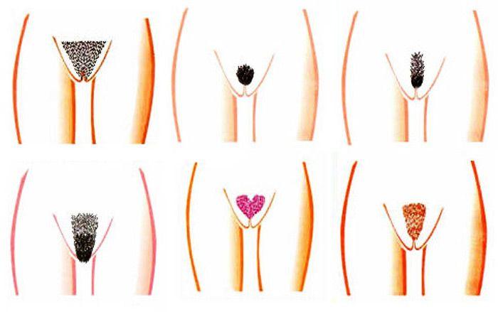 Как сделать кожу на ногах нежной и гладкой? - Мода 84