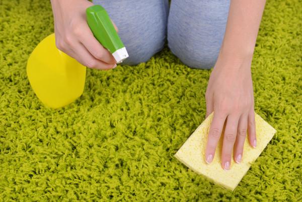 Как почистить ковер. Способы чистки ковра. Советы о том, как можно почистить ковер. Как держать ковер в чистотеBagiraClub Женски