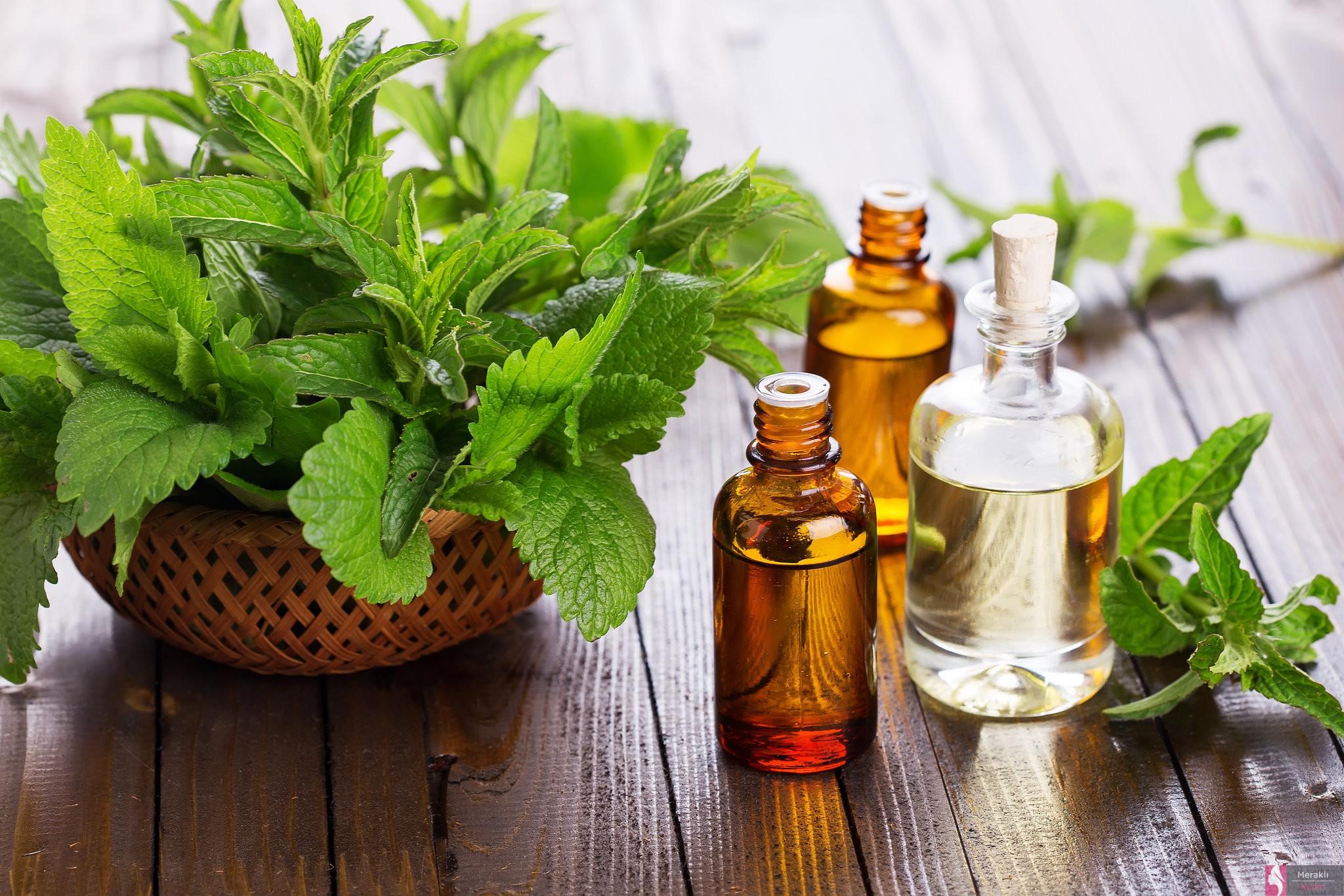 электробезопасности система масла растений в косметологии домашнего