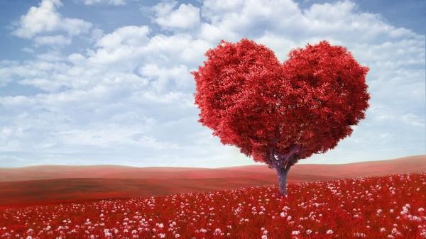 любовь1