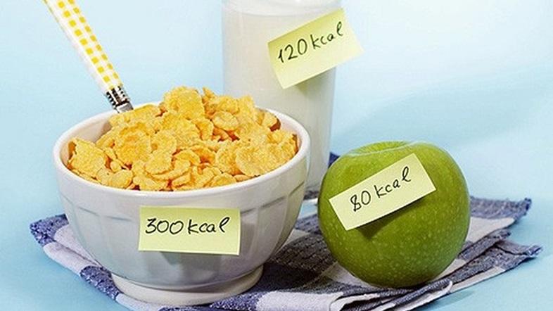 как можно похудеть считая калории