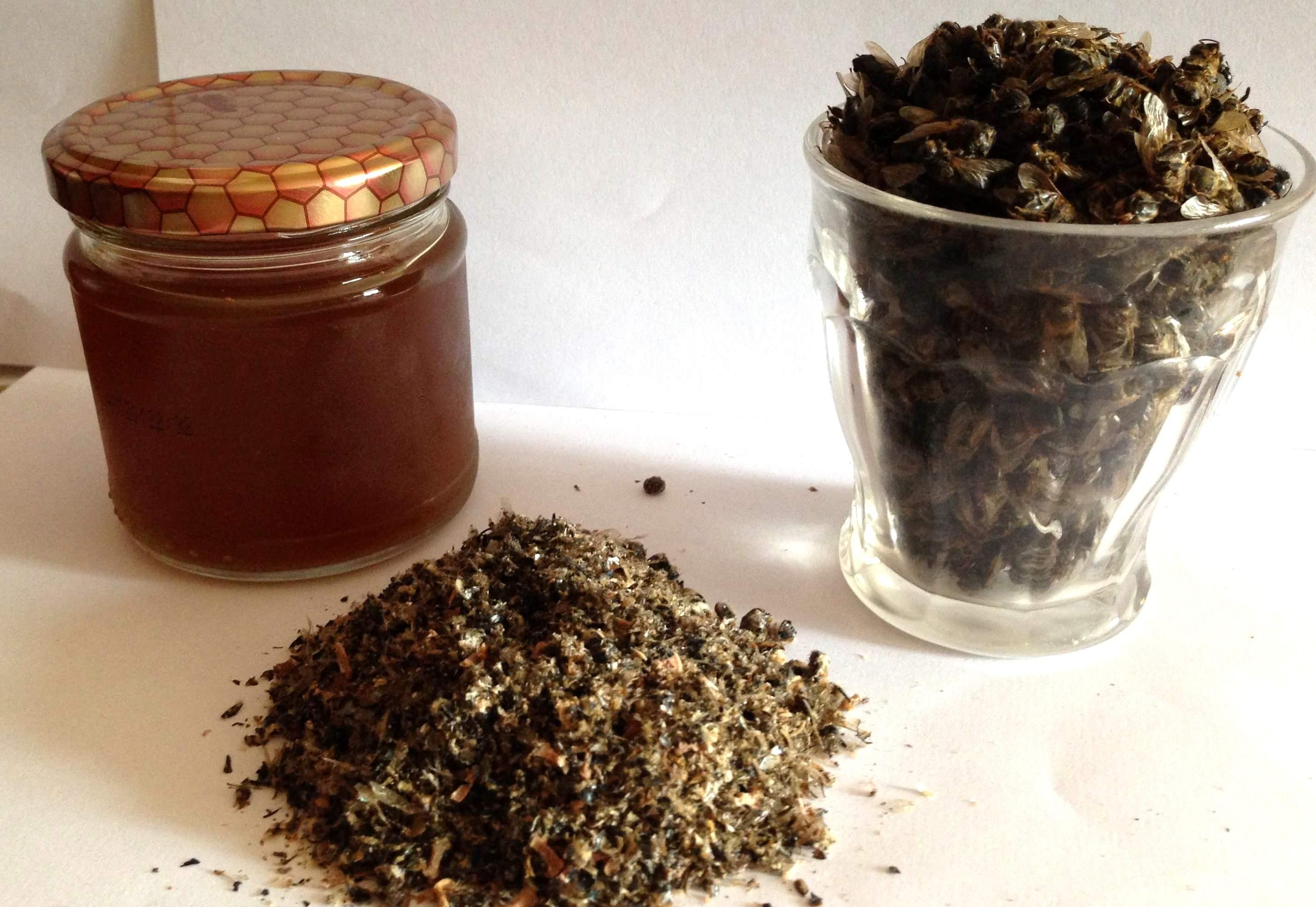 Как правильно сделать настойку на пчелином подморе