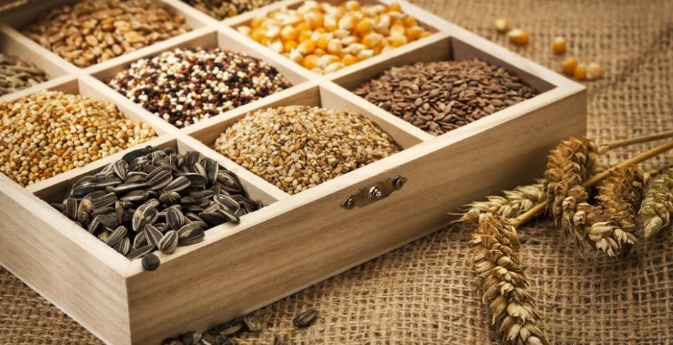 Полезные семена, которые стоит включить в свой рацион. Самые полезные семена. Полезные семена и их свойства.BagiraClub Женский к