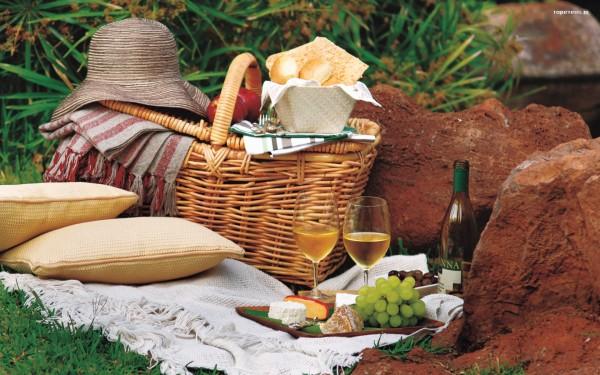 piknik_012_koszyk__kapelusz__poduszki__wino