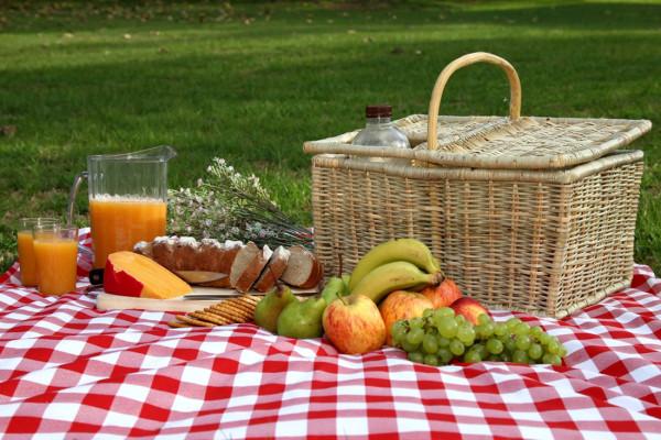 Produktyi-na-piknik