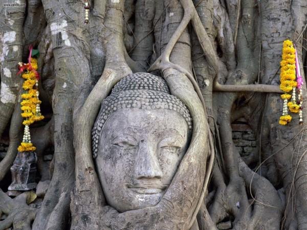 Thailande_Ayutthaya_02