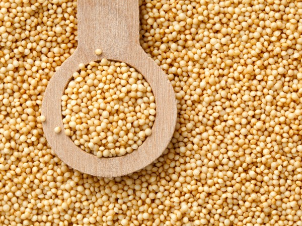 It takes hundreds of extremely tiny seeds of amaranth to fill this 1/8th teaspoon measuring spoon. Amaranth is gluten free, contains more essential amino acids than any other plant source (lysine in particular), high in protein and is second only to quinoa as a plant-based source of iron. Amaranth is said to be the only grain to include vitamin C.