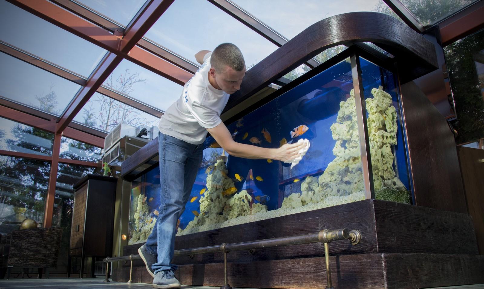 Чистить аквариум в домашних условиях 718