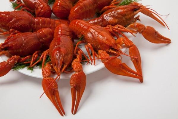 prodazha-dostavka-varenyh-rakov