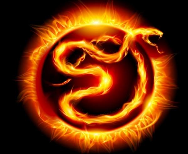 Огненная-змея
