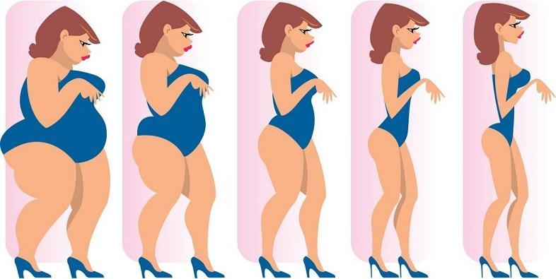 что нужно делать чтобы похудеть на20кг за месяц